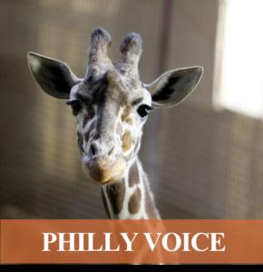 Enjoy food, drink from top restaurants at Elmwood Park Zoo's Beast of a Feast
